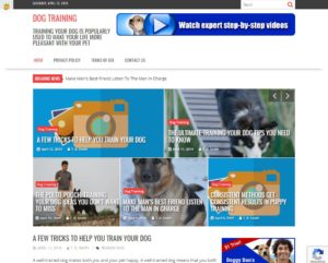 Dog Training 1 300x241 - Internet InfoMedia